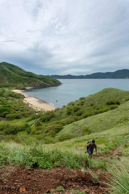 Bat Island trails