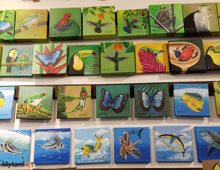 Costa Rican souvenirs - local paintings