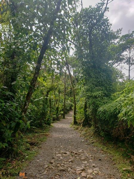 Rio-Celeste trail