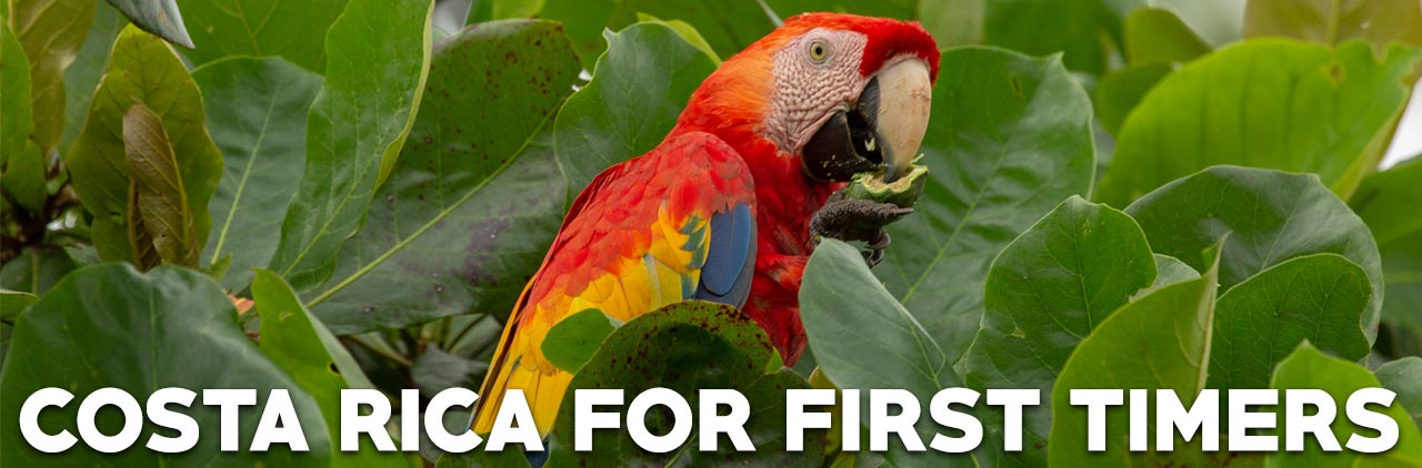 Costa Rica for first timers