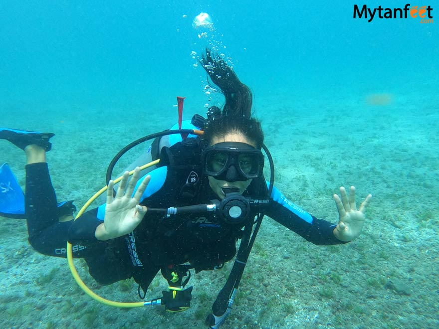 scuba diving last catalinas