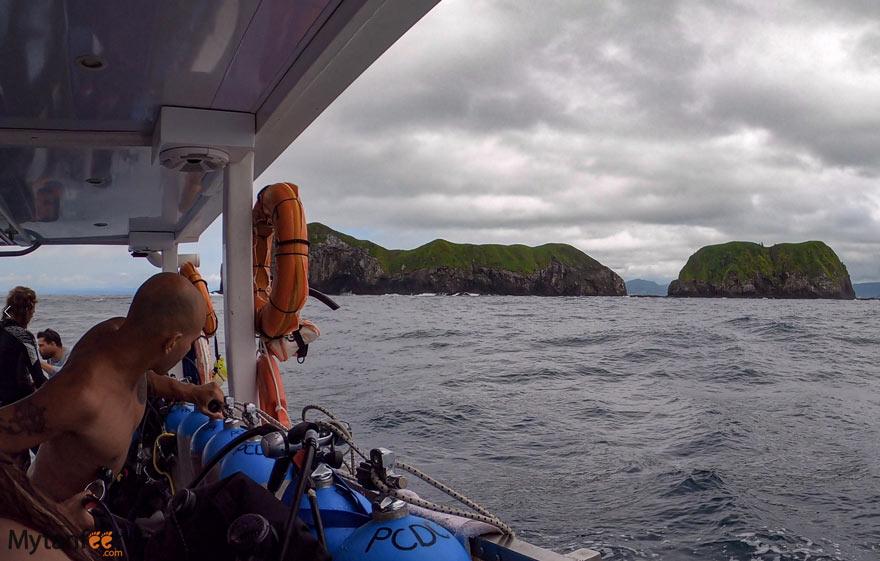 Catalinas Island Scuba diving