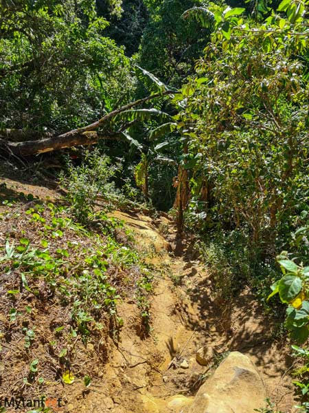 Free places in Monteverde