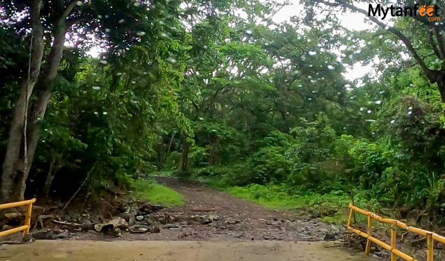 Iguanita wildlife Refuge road