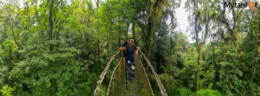 Guanacaste rainforest sloth tour -  heliconias rainforest reserve