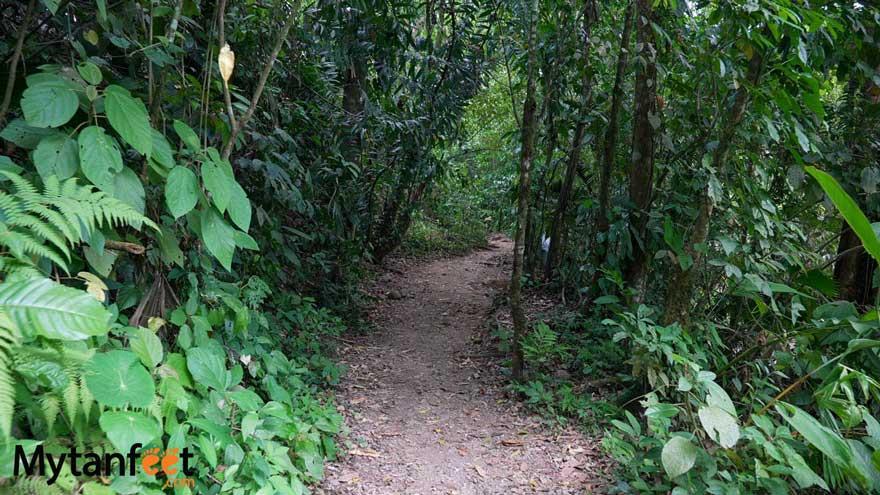 el salto la fortuna trail