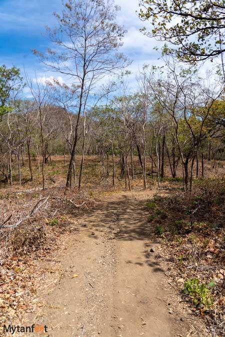 Trail to Playa Azucar