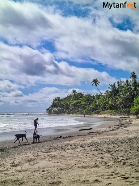 Playa Hermosa Playa Cocal Grande
